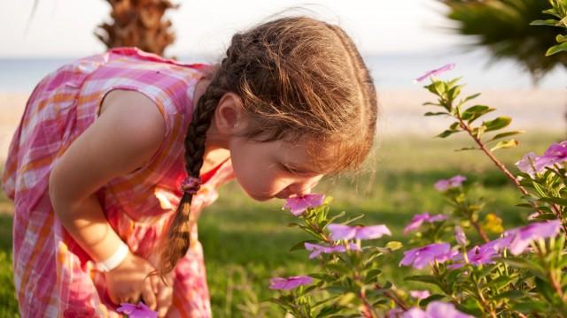 המלצות לתכנון פעילות יומית עם הילדים /יום ד', 18.03.2020